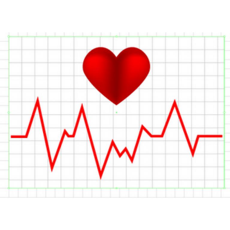 ¿Cuántas veces Late el corazón por día?
