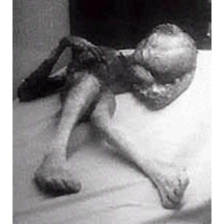 Fotografía de un extraterrestre