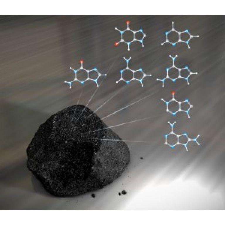 La NASA ha revelado que elementos de ADN presentes en meteoritos fueron originados en el espacio.