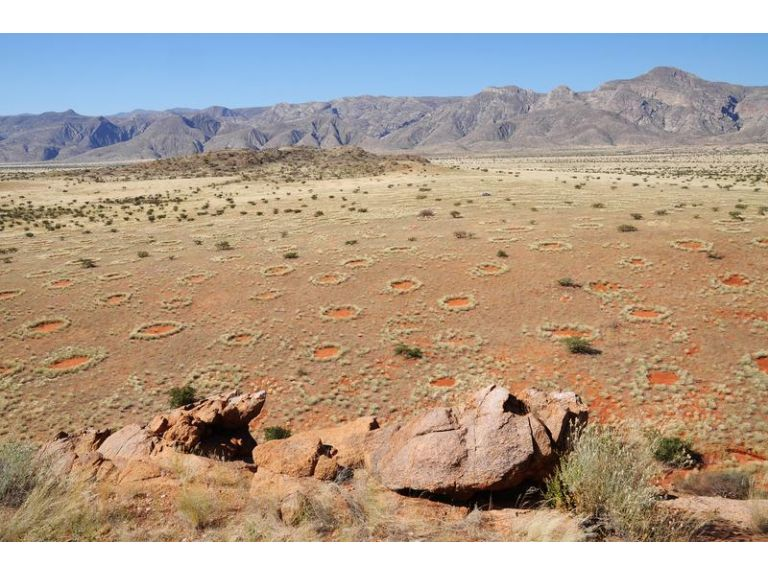 """Los misteriosos """"círculos de las hadas"""" en Namibia"""