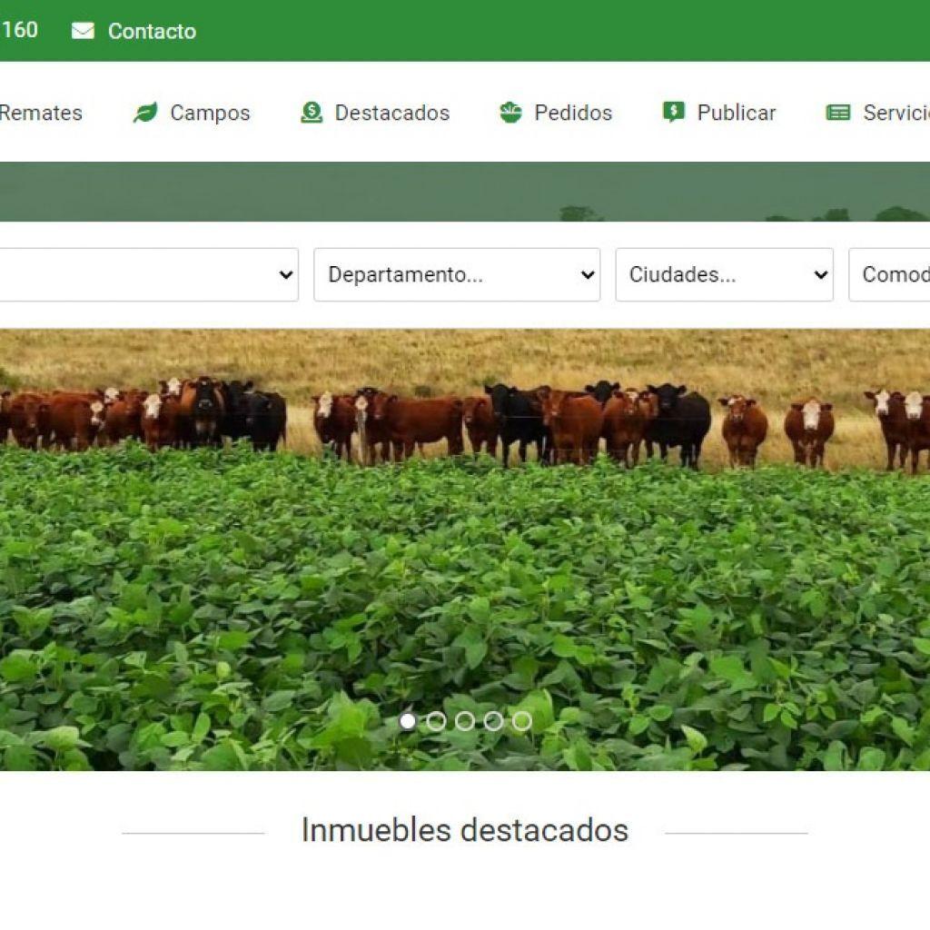 Uruguay, campos, venta, compra, inversiones, negocios rurales.