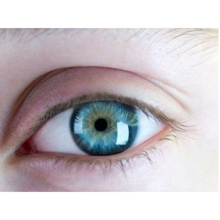 El color de los ojos