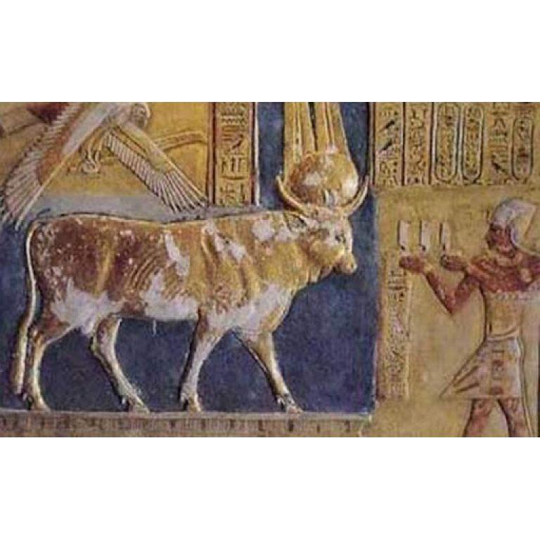 Dioses del vino en Egipto.