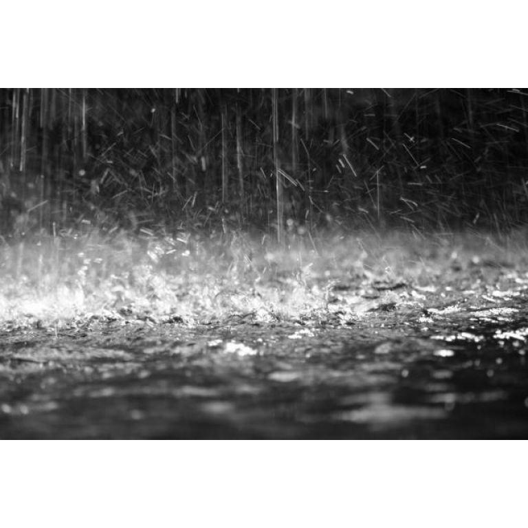¿Qué causa el olor a tierra mojada después de la lluvia?